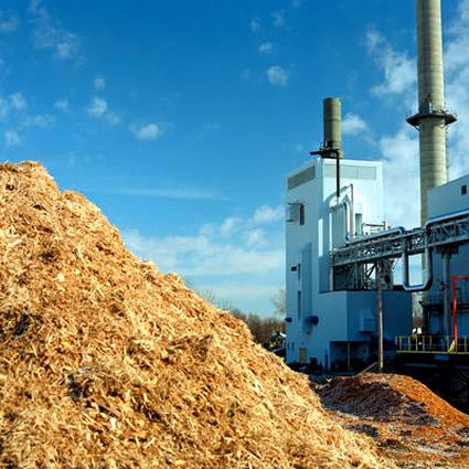 biomasse_svezia