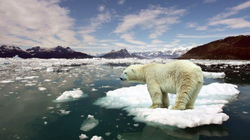 7004609-stop-global-warming